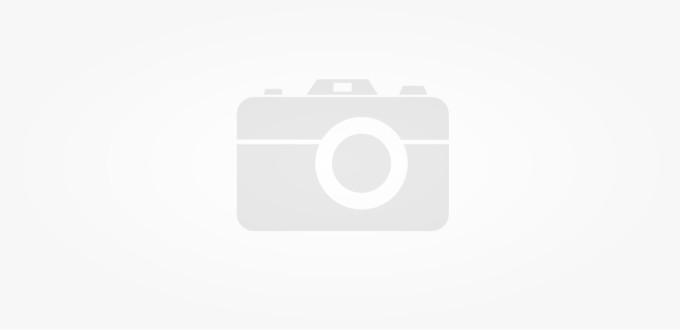Uitstel Algemene leden vergadering (ALV) van Collectief ANB Oost-Brabant