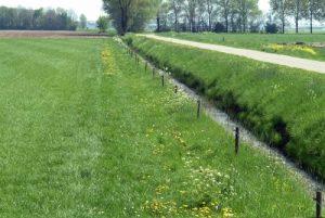 Waterbeheer mogelijk in Aa en Maas