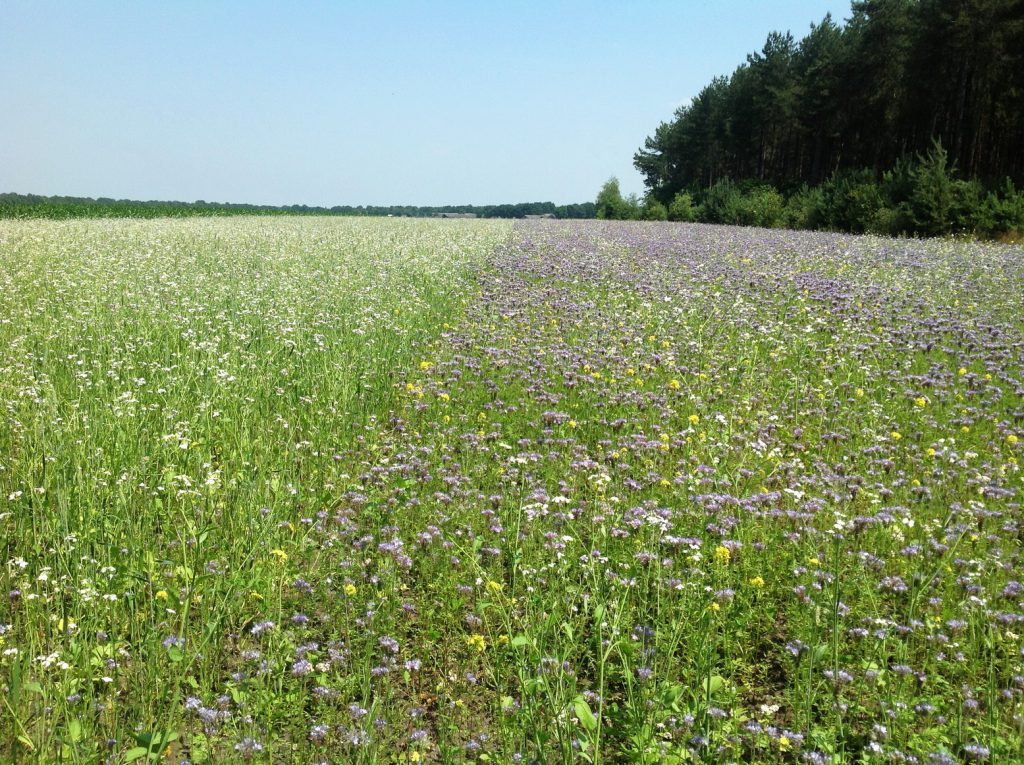 """Deelname aan provinciaal project """"Natuurinclusieve landbouw, ondernemerscoach"""""""