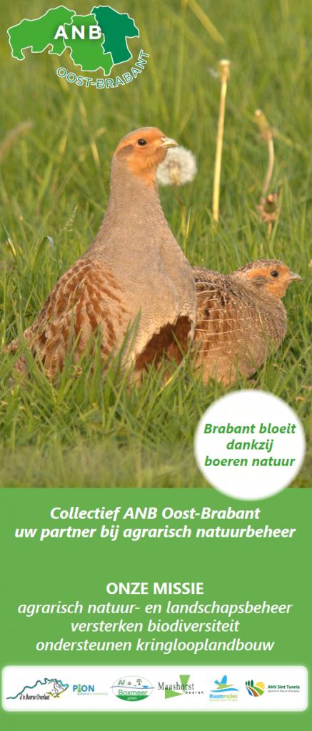 Nieuwe Roll-up banners voor Collectief Agrarisch Natuurbeheer Brabant!
