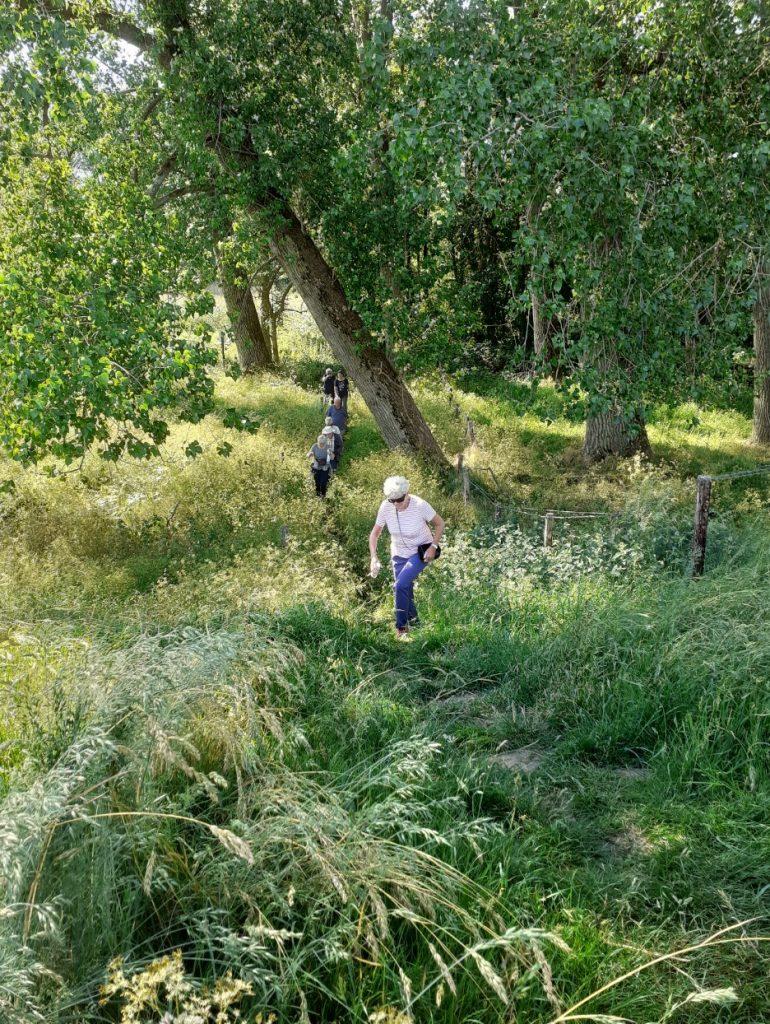 Agrarisch natuurbeheer ondersteund Landgoed De Koekoek.